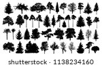 coniferous forest. trees set... | Shutterstock .eps vector #1138234160