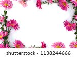 frame of flowers pink... | Shutterstock . vector #1138244666