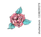 red rose embroidery sketch... | Shutterstock .eps vector #1138259273