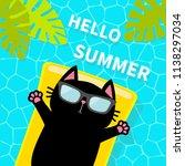 swimming pool. black cat... | Shutterstock .eps vector #1138297034