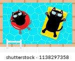 swimming pool. black cat... | Shutterstock .eps vector #1138297358