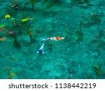 monet's pond in japan  emerald...   Shutterstock . vector #1138442219