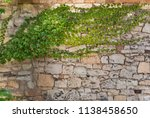 background. ivy on the stone... | Shutterstock . vector #1138458650
