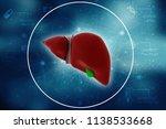 realistic human liver 3d... | Shutterstock . vector #1138533668