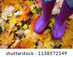 autumn mood   feet in gumboots... | Shutterstock . vector #1138572149