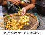 longon  an exotic tropical... | Shutterstock . vector #1138593473