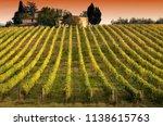 beautiful vineyards in chianti...   Shutterstock . vector #1138615763