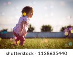 one year old or 15 months old... | Shutterstock . vector #1138635440