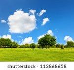 green grass on a golf field | Shutterstock . vector #113868658