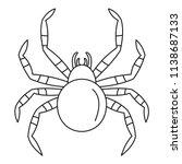 tarantum spider icon. outline... | Shutterstock .eps vector #1138687133