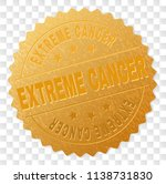 extreme cancer gold stamp... | Shutterstock .eps vector #1138731830