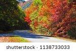 driving on blue ridge parkway...   Shutterstock . vector #1138733033