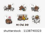 owl and the day of the owl.... | Shutterstock .eps vector #1138740323