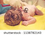 a newborn baby at the hospital | Shutterstock . vector #1138782143