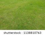 green grass background texture. | Shutterstock . vector #1138810763