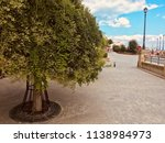 people stroll along the... | Shutterstock . vector #1138984973