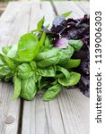 green and purple basil in the... | Shutterstock . vector #1139006303