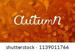 stock vector illustration... | Shutterstock .eps vector #1139011766