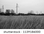 black and white landscape of... | Shutterstock . vector #1139186000