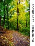 autumn park. autumn nature...   Shutterstock . vector #1139186006