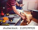 small yellow dog sleeping... | Shutterstock . vector #1139199920