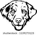 australian shepherd sheltie dog ... | Shutterstock .eps vector #1139273123