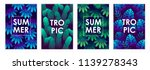 set of templates of tropical... | Shutterstock .eps vector #1139278343