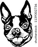 boston terrier lap dog breed... | Shutterstock .eps vector #1139302736