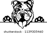 english bulldog lap dog breed... | Shutterstock .eps vector #1139305460