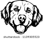 golden retriever dog breed face ... | Shutterstock .eps vector #1139305523