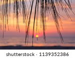 a view of pine leaves and sea... | Shutterstock . vector #1139352386