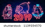 neon pig. symbol of 2019 year.... | Shutterstock .eps vector #1139354570