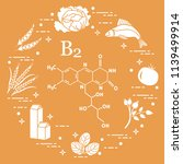 foods rich in vitamin b2.... | Shutterstock .eps vector #1139499914