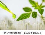 pipette over test tube dropping ... | Shutterstock . vector #1139510336