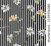 white daisy flower. floral...   Shutterstock . vector #1139556380