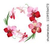 red orchid vanda flower. floral ... | Shutterstock . vector #1139556473