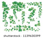 ivy green leaves. hanging... | Shutterstock .eps vector #1139630399
