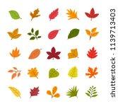 vector illustration of autumn... | Shutterstock .eps vector #1139713403