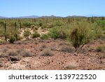 the sonora desert and distant... | Shutterstock . vector #1139722520