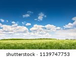 green agricultural field with... | Shutterstock . vector #1139747753