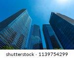 skyline of singapore city.... | Shutterstock . vector #1139754299