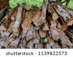 pile of firewood backgrounds... | Shutterstock . vector #1139822573