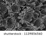 abstract pattern of black and... | Shutterstock . vector #1139856560