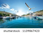 seagull over boats in bay of... | Shutterstock . vector #1139867423