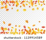 oak and maple leaf abstract... | Shutterstock .eps vector #1139914589