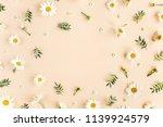 frame made of chamomiles ... | Shutterstock . vector #1139924579