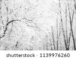 brown bare tree trunk with lots ... | Shutterstock . vector #1139976260