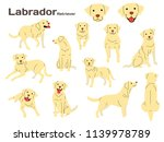 labrador illustration dog poses ... | Shutterstock .eps vector #1139978789