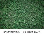 nature background flat lay of... | Shutterstock . vector #1140051674