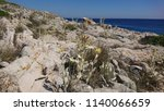 mediterranean white and yellow... | Shutterstock . vector #1140066659